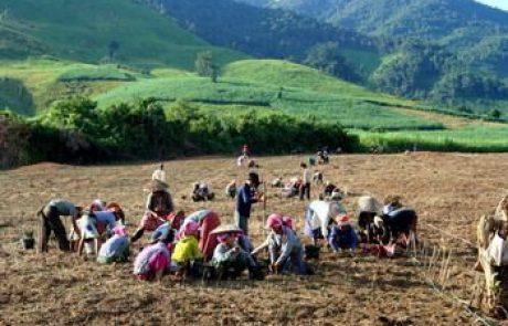 לאוס – עצות למטייל בארץ הנשכחת בדרום-מזרח אסיה
