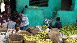 Benin-web_6