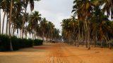 Benin-web_86