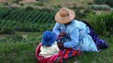 Bolivia_37_resize