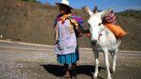 Bolivia_47_resize