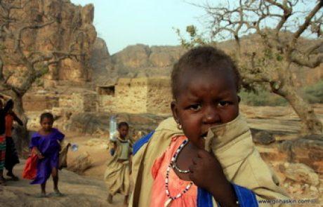 טיול למאלי וסנגאל – שלהי דצמבר 2010