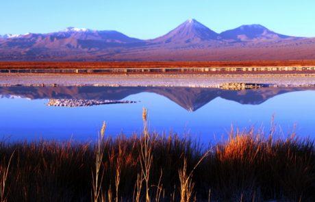 טיול למדבר אטקמה שבצפון צ'ילה