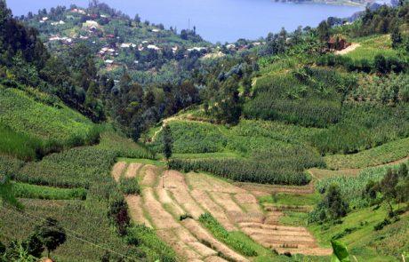 רואנדה – רשמי מסע בימי קורונה