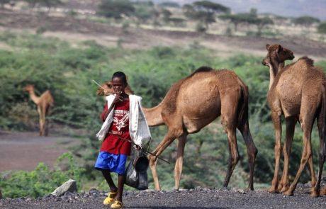 אתיופיה  ומדבר  דנקיל  –  ינואר  2017