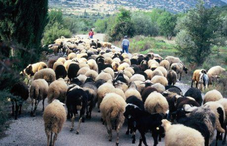 טיול ליוון – חומר עזר למטייל