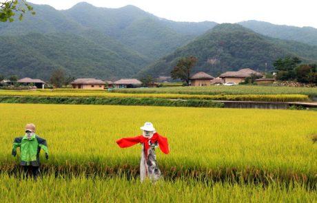 תולדות דרום קוריאה מפאק גוּן-הְיֶה עד ל-2018