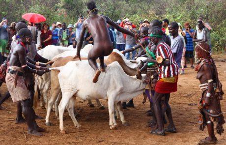 תעודת זהות של אתיופיה