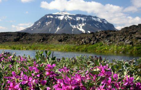 טיול לאיסלנד-אוגוסט ספטמבר 2015