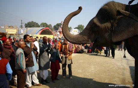 הודו לאורך הגנגס-דצמבר 2015