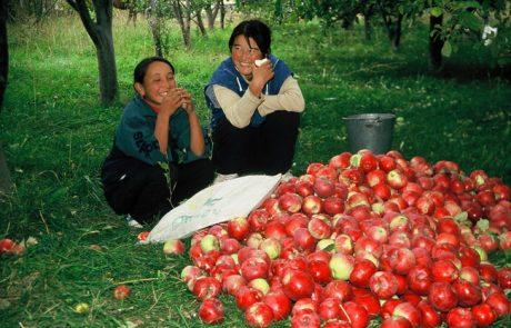 בדרך המשי הקירגיזית  – קיץ  2021