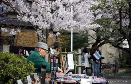 טיול ליפן בפריחת הדובדבן – אביב 2015
