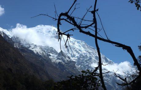 טרק ללנגטנג – נפאל
