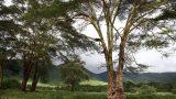 Ngorongoro-best_23-min
