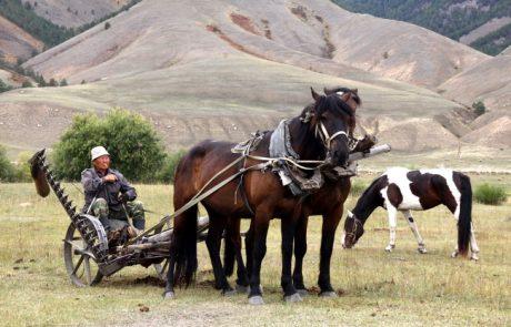 הרכבת הטרנס סיבירית – יומן מסע
