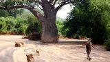 Tanzania-14-b_33-min