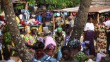 Togo-web_14