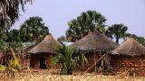 Togo-web_33
