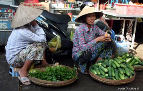 אוכלוסיית וייטנאם