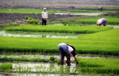 מבוא לטיול בווייטנאם, קמבודיה ולאוס