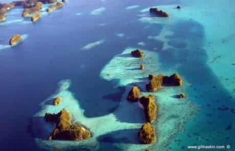 טיול לפלאו – היפה באיי מיקרונזיה