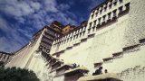tibet-x-24