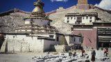 tibet-x-34