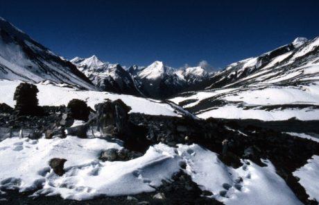 הודו: טיול לקשמיר – פרקי יומן